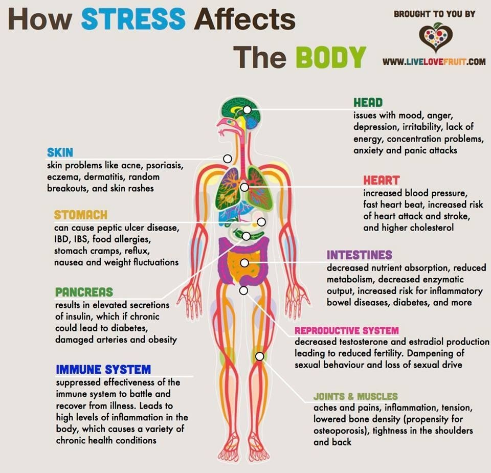 Essay about the effects of stress on health